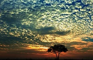African Sunset at Murchison Falls Uganda0036 960x619