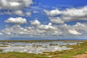 Amboseli National Park Wilderness Kenya Africa 0018 960x638